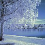 Rovaniemi, Finland. Author Tarja Ryhannen Mitrovic. Licensed under the Creative Commons Attribution..