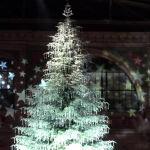 Christmas, Zurich, Switzerland. Author Rosmary. Licensed under Creative Commons Attribution